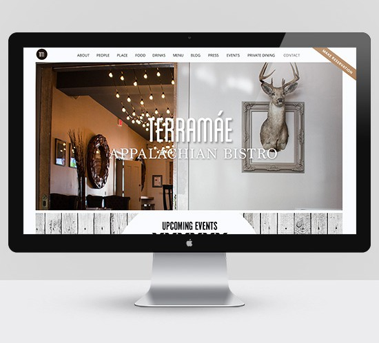 TerraMae Website Design